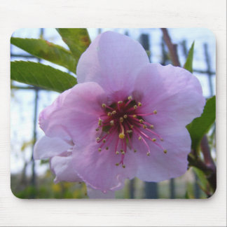 Mouse pad with flower