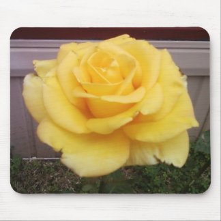 Mouse Pad - Yellow Rose