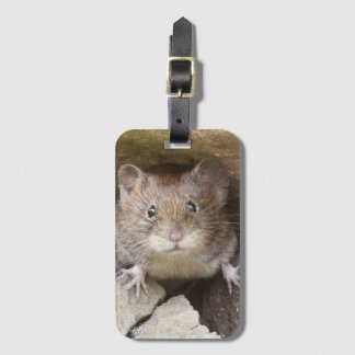 Mouse Portrait Luggage Tag