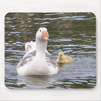 Mousemat: Mother goose and gosling Mouse Pad