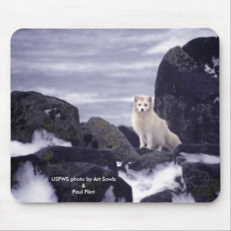 Mousepad / Arctic Fox