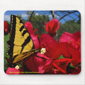 Mousepad - Butterlfly sucking on a flower
