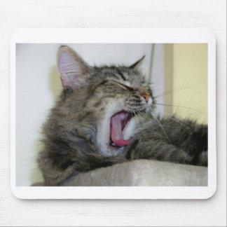 Mousepad cat