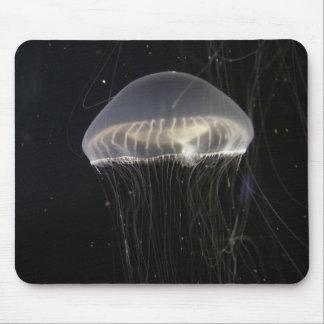 Mousepad: Crystal Jelly