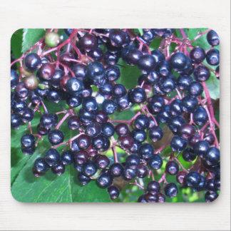 Mousepad elder Sambucus Berries