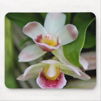 Mousepad - Fan Shaped Orchid
