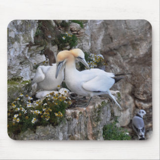 Mousepad: Gannets and Flowers Mouse Pad