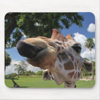 Mousepad Giraffe