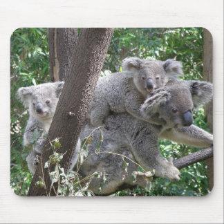 Mousepad Koala and Two Babies Photo Australia