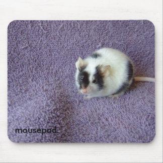 mousepad. mouse pad