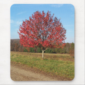 Mousepad of a beautiful red tree in the field