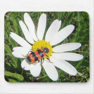 Mousepad of red-black beetles on white daisy