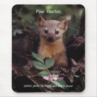 Mousepad / Pine Marten