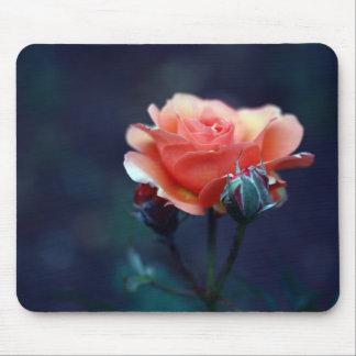 Mousepad ~ Pink Rose ~