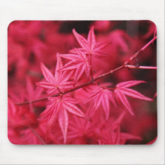 Mousepad-Red Maple Tree Mouse Pad