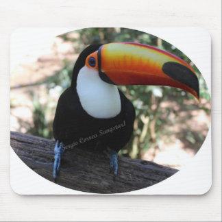 Mousepad Toucan