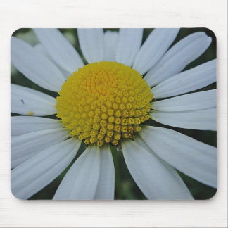 Mousepad white daisy