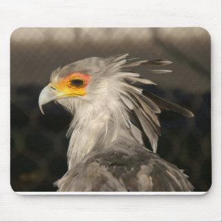 mousepad with bird