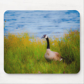 Mousepad with Duck