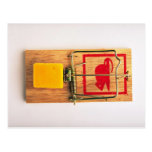 Mousetrap Post Cards
