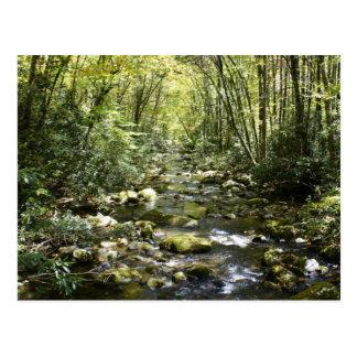 Moutain Creek Postcard