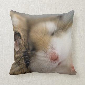 Move over Bob pillow