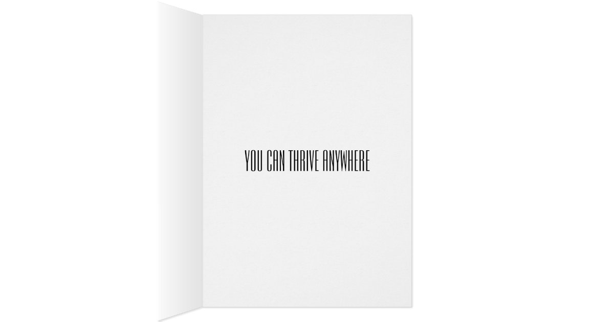 moving, changing jobs, changing careers, divorce greeting card, Greeting card