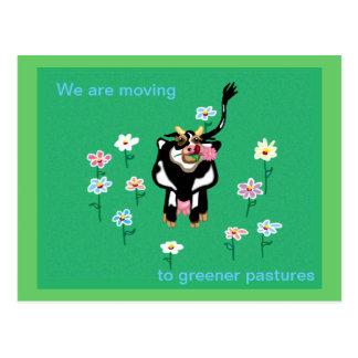 Moving to greener pastures postcard