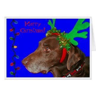 Moxie 20103, Merry Christmas! Card