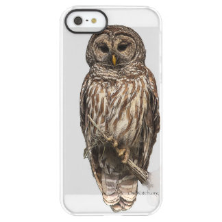 Mr Barred Owl -  iPhone SE + iPhone 5/5s Permafrost® iPhone SE/5/5s Case
