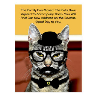 Mr. Cat Announces Move with New Address Postcard