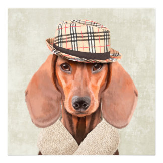 Mr Dachshund Photographic Print