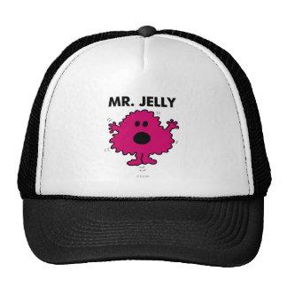 Mr Jelly Classic Mesh Hat
