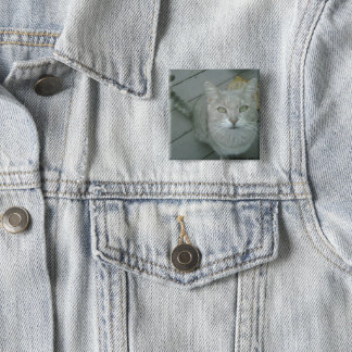 """Mr. Lover"" Cat button"