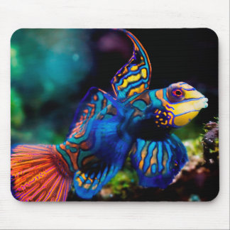 Mr. Mandarin Mouse Pad