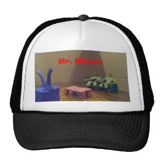 Mr. Mister Cap