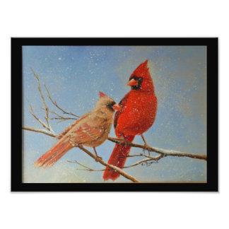Mr. & Mrs. Cardinal Photo Print