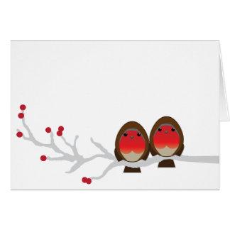 mr & mrs robin CHRISTMAS greeting card
