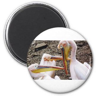 Mr  Pelican's Look 6 Cm Round Magnet