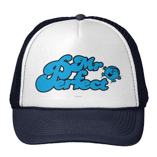 Mr Perfect Logo Mesh Hat