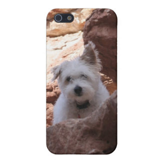Mr. Pish at the Grand Canyon! Case For iPhone 5/5S