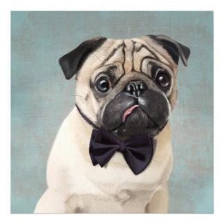 Mr Pug Photo Print