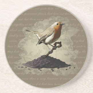 Mr. Robin Finds the Key, coaster