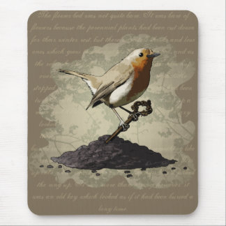 Mr. Robin Finds the Key, mousepad Mouse Pad