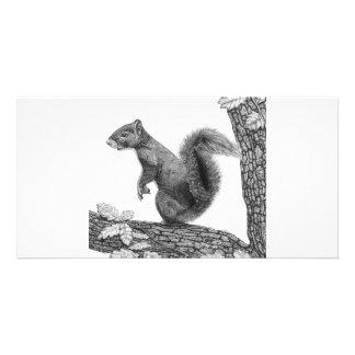 Mr Squirrel - Photo Card