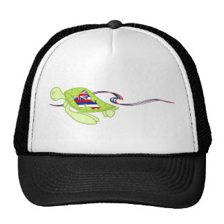 mr turtle trucker hat