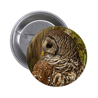 Mrs Barred Owl Buttons