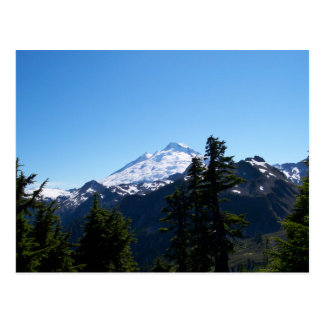 Mt Baker in Summer Postcard