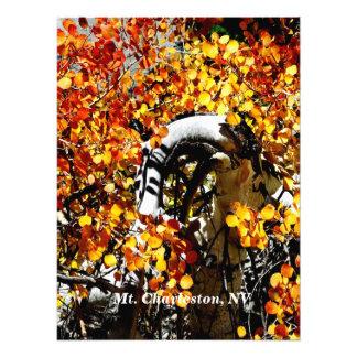 Mt. Charleston NV Autumn Aspen Photo Print