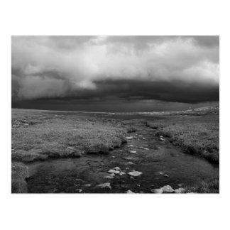 Mt. Evans Stream Postcard